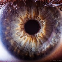 extreme-close-up-of-human-eye-macro-suren-manvelyan-18