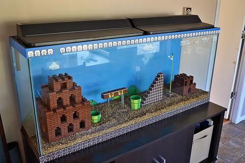 Avoir Un Aquarium je rêve d'avoir cet aquarium mario bros. pour mes petits poissons