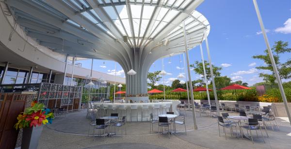 Cette terrasse est l un des secrets les mieux gard s de - Terrasse jardin botanique montreal poitiers ...